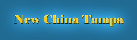 Logo-newchinatampa